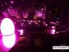 Roberto_Cavalli_Dubai_restaurant_Club_decoration06