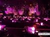 Roberto_Cavalli_Dubai_restaurant_Club_decoration08