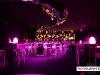 Roberto_Cavalli_Dubai_restaurant_Club_decoration10