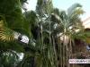 santo_domingo_dominican_republic_004