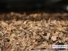 davidoff_cigars_factory_visit_dominican_018