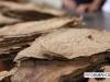 davidoff_cigars_factory_visit_dominican_027