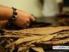 davidoff_cigars_factory_visit_dominican_031
