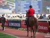 horse_Worldcup2015_005.jpg