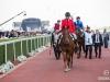 horse_Worldcup2015_013.jpg