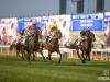 horse_Worldcup2015_021.jpg