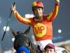 horse_Worldcup2015_036.jpg