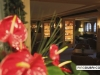 grand_hotel_park_gstaad_025