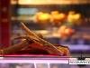 lafayette_gourmet_dubai_mall16